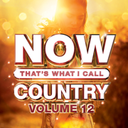 NOW That's What I Call Country, Vol. 12 - Various Artists - Various Artists
