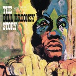Big Bill Broonzy - Goin' Down the Road Feelin' Bad