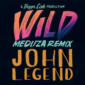 John Legend - Wild (MEDUZA Remix)