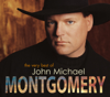 John Michael Montgomery - Sold (The Grundy County Auction Incident)  artwork