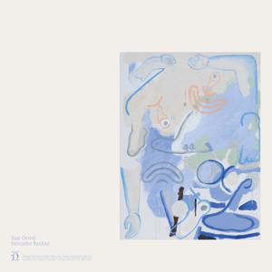 Devendra Banhart - Vast Ovoid - EP