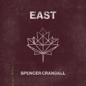 Things I Can't Say (feat. Julia Cole) - Spencer Crandall