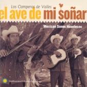 Los Camperos de Valles - El fandanguito - The Little Fandango