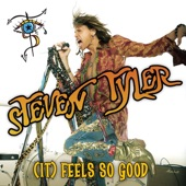 Steven Tyler - (It) Feels So Good