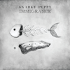 Bad Kids to the Back - Snarky Puppy