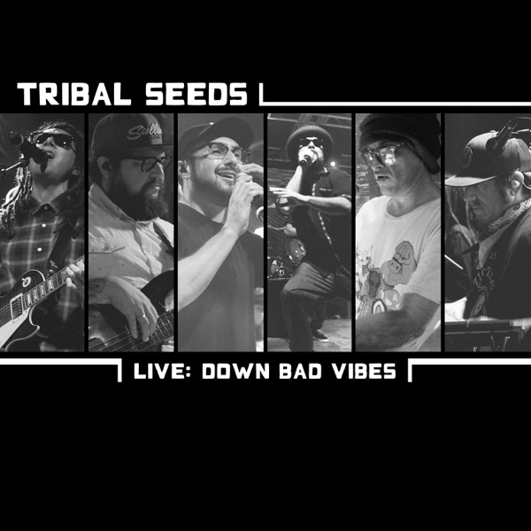 Down Bad Vibes (Live) - Single