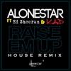 Raise Em up House Remix feat Ed Sheeran Single