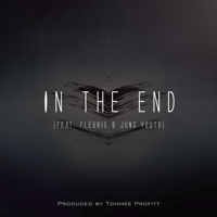 Tommee Profitt - In the End (feat. Fleurie & Jung Youth) artwork