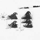 Nisa - Ferris Wheel