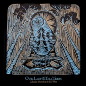 Cahalen Morrison - Our Lady of the Tall Trees
