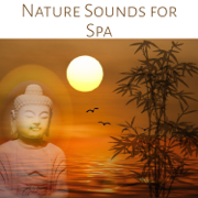 Nature Sounds for Spa: Relaxing Ambiences for Wellness, Massage and Reiki, New Age Music for Yoga, Meditation & Healing - Pure Spa Massage Music