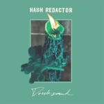 Hash Redactor - Step 2: Success