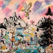 North Americans - American Dipper
