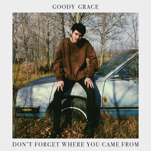 Goody Grace - Don't Forget Where You Came From