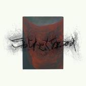 Sockethead - Chaos Portrait