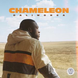 Daliwonga - Chameleon