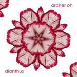 Archer Oh - Dianthus