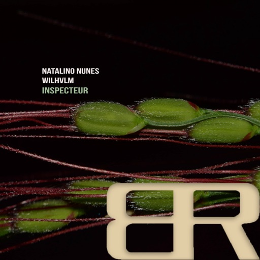 Inspecteur - Single by Natalino Nunes & Wilhvlm