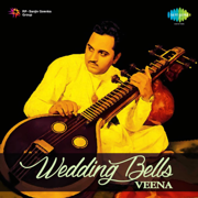 Rhythms Of India (Instrumental) - Chitti Babu - Chitti Babu