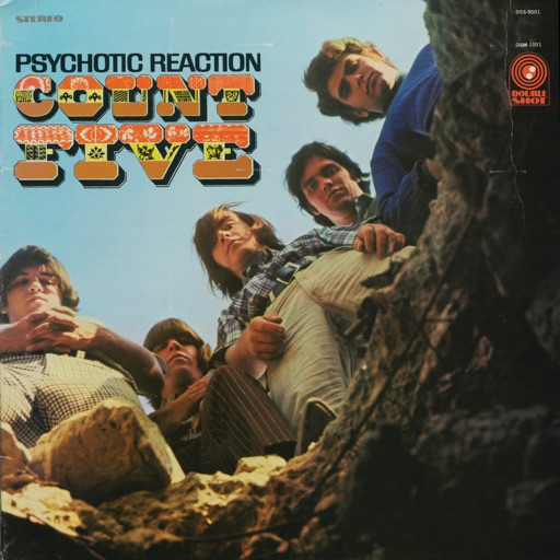 Art for Psychotic Reaction by Count Five