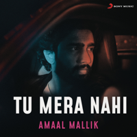 Amaal Mallik - Tu Mera Nahi