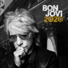 Limitless by Bon Jovi
