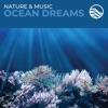 Nature Music Ocean Dreams
