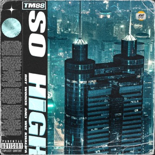 TM88, Wiz Khalifa & Roy Woods – So High – Single [iTunes Plus AAC M4A]