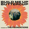Build Me Up Buttercup The Best of The Foundations