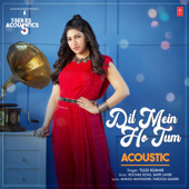 Dil Mein Ho Tum Acoustic (From