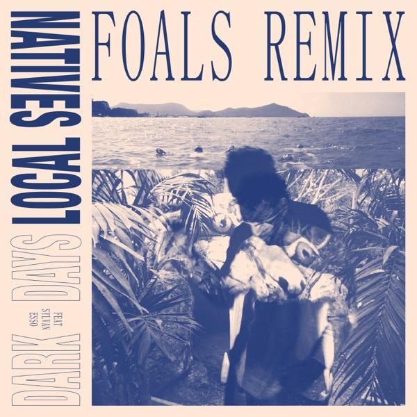 Dark Days (Foals Remix) [feat. Sylvan Esso] - Single