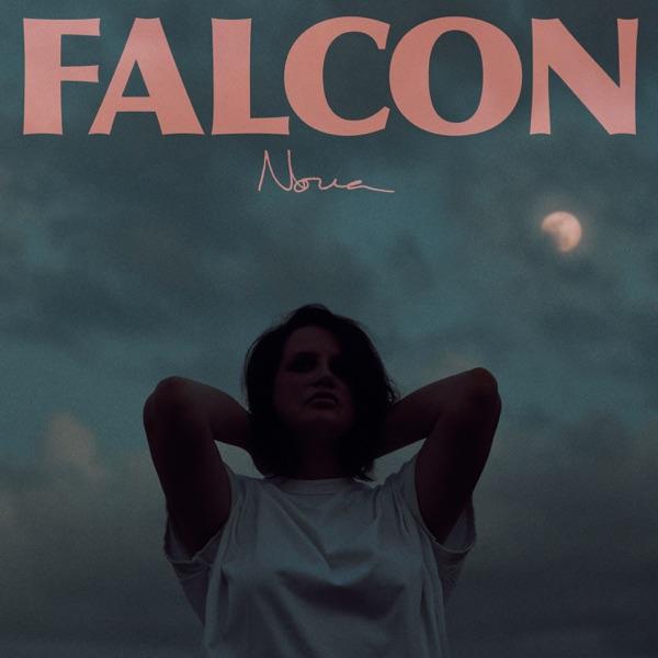 Falcon - Nova