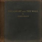 Joshua Radin - You're My Home