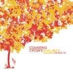 songs like Big Yellow Taxi (feat. Vanessa Carlton)