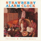Strawberry Alarm Clock - Rainy Day Mushroom Pillow
