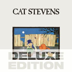 Cat Stevens - Moonshadow