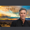 Patrick Bradley - Exhale  artwork