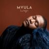 Langa Mavuso - Mvula artwork