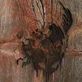 Avey Tare's Slasher Flicks - Strange Colores