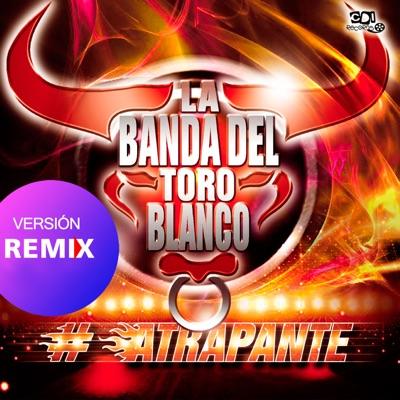 Quiero verte (Remix) [feat. Los Lirios] - Single - La Banda Del Toro Blanco
