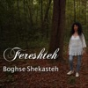 Boghse Shekasteh Single
