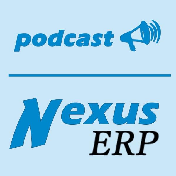 Aventurile Utilizării Nexus ERP