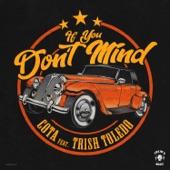 cota - If You Don't Mind (feat. Trish Toledo)