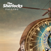 The Sherlocks - Falling artwork