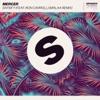 Satisfy (feat. Ron Carroll) [Malaa Remix]