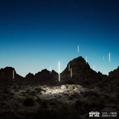 Desert Night (Live from Joshua Tree)