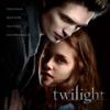 Various Artists - Twilight (Original Motion Picture Soundtrack)  artwork