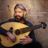 Mehmet Polat - Aftab
