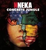 Nneka - Suffri