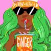 Riton & Kah-Lo - Ginger artwork